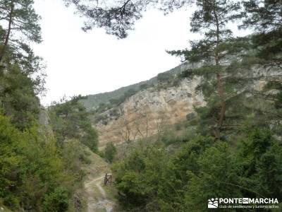 Salto del Nervión - Salinas de Añana - Parque Natural de Valderejo;rutas alto tajo clubs en madrid